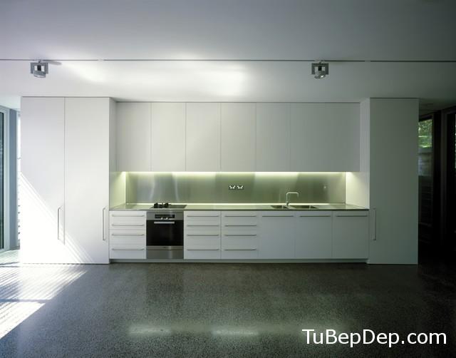TBCN1 (55)
