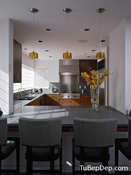 725120080f695074_1096-w550-h734-b0-p0-modern-kitchen